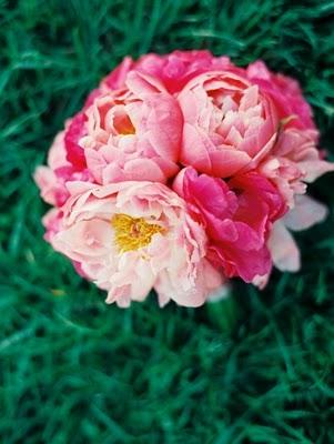 R&A NY bouquet1