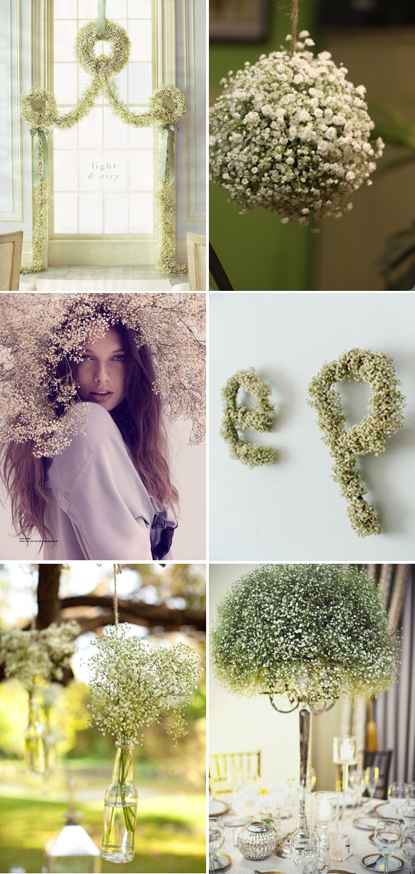 Baby's breath done right! 2