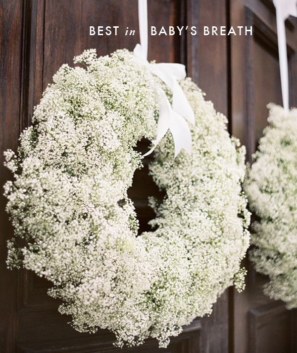 Baby's breath done right! 1