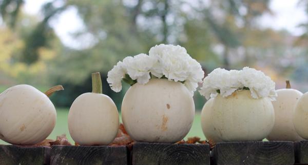 DIY: How to make white pumpkin centerpieces 7