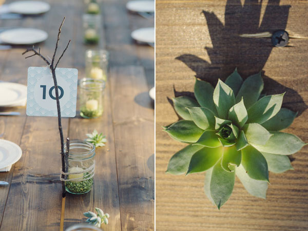 succulent centerpieces and table numbers
