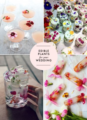 wedding ideas for the bride edible plants for your wedding modern 28187