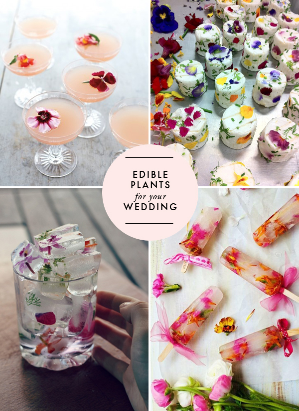 edible-plants-for-your-wedding