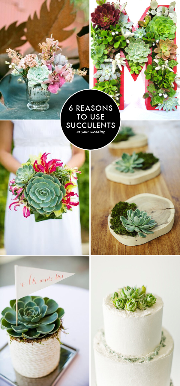 6-ways-to-use-succulents-at-your-wedding