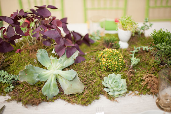 moss runner with succulents