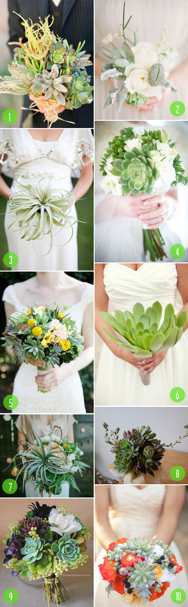 top 10: succulent bouquets
