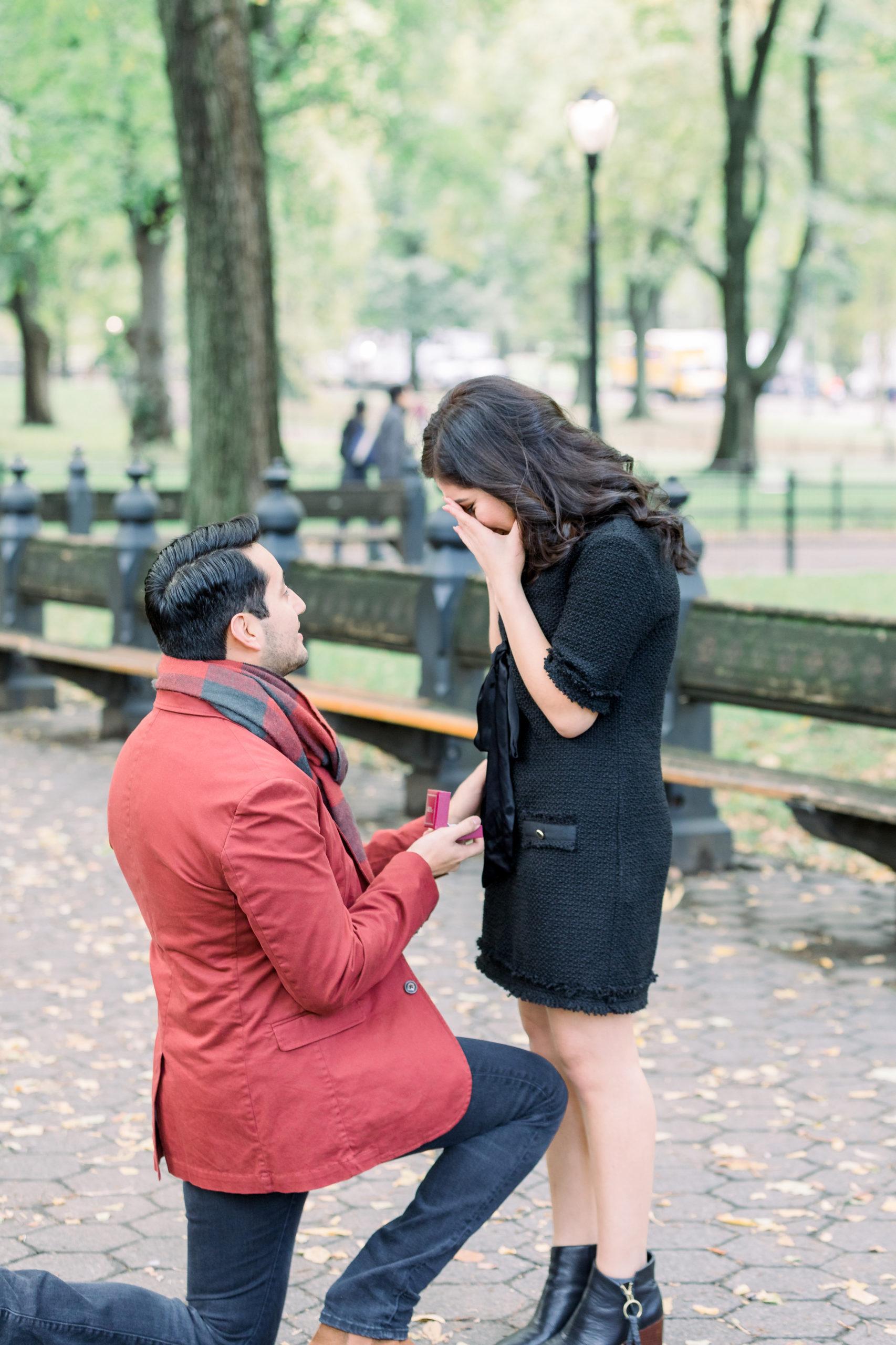Cozy Central Park Proposal 6