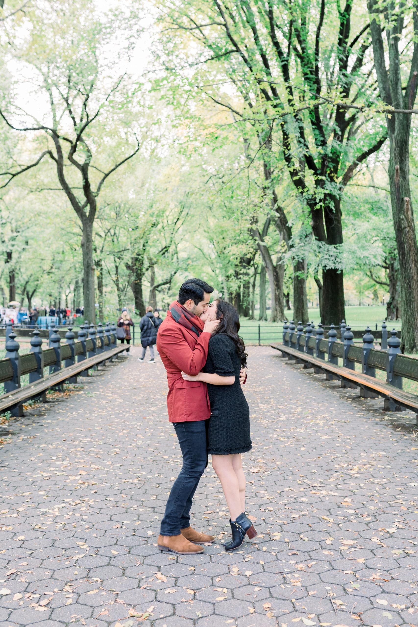 Cozy Central Park Proposal 7